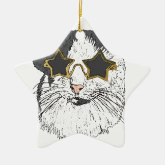 Cat Wearing Star Glasses Ceramic Star Decoration