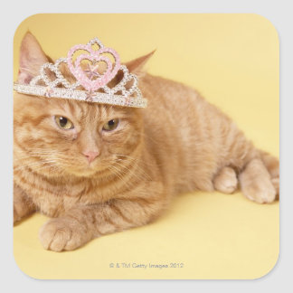 Cat wearing tiara square sticker