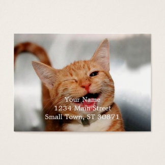 Cat winking - orange cat - funny cats - cat smile business card