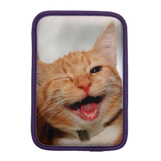 Cat winking - orange cat - funny cats - cat smile iPad mini sleeve