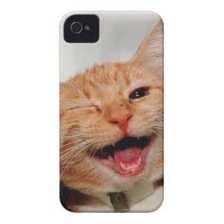 Cat winking - orange cat - funny cats - cat smile iPhone 4 cover