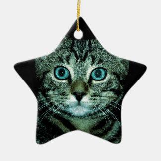Cat with Aqua Eyes Customize pet house Eye Christmas Ornaments