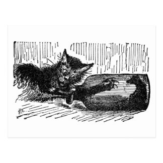 Cat With Arm in Bottle After Mouse Postcard