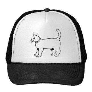 Cat with collar mesh hat