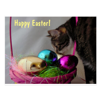 Cat with Easter Basket Postcard
