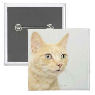 Cat with eyes open wide, close-up 15 cm square badge