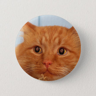 Cat With Fireworks Eyes 6 Cm Round Badge