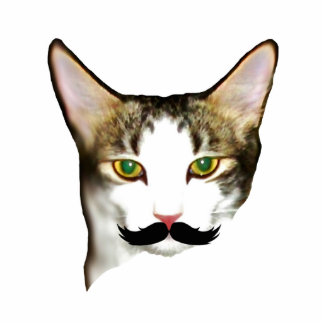 Cat with Moustache Magnet Acrylic Cut Out