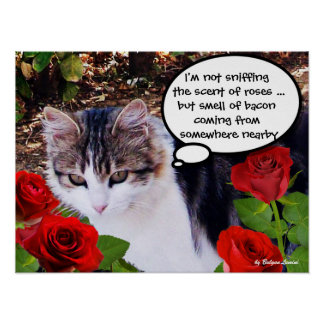 CAT WITH RED ROSES POSTERS