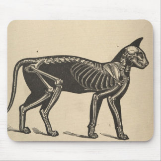Cat with skeleton mouse pad