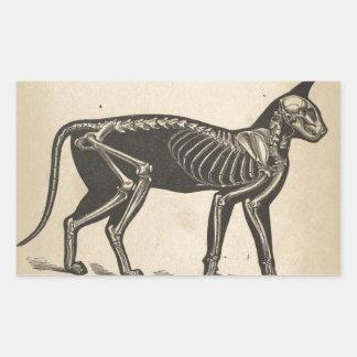 Cat with skeleton rectangular sticker
