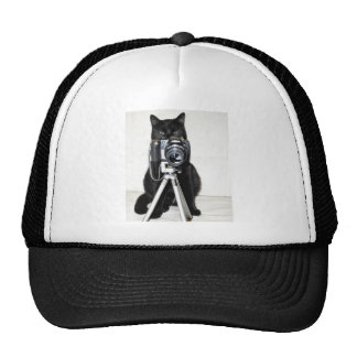 Cat with the camera trucker hat