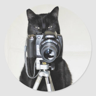 Cat with the camera round stickers