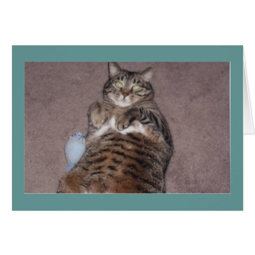 Cat With Tude Birthday Card