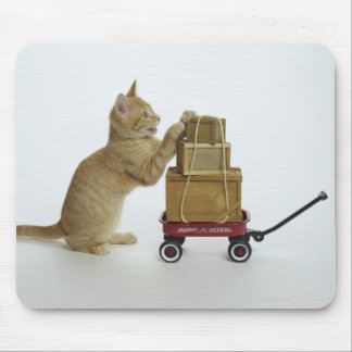 Cat with wagon and boxes mouse pad