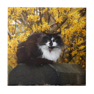 Cat With Yellow Flowers Small Square Tile