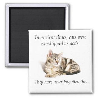 Cat worship square magnet