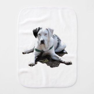 Catahoula Cur Laying Down Burp Cloth