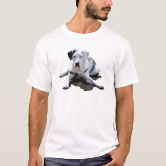 Catahoula Cur Laying Down T-Shirt