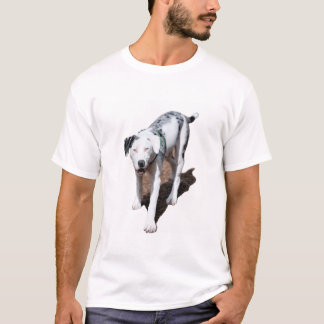 Catahoula Cur T-Shirt
