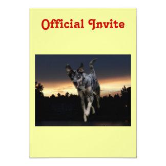 Catahoula Leopard Dog Running on Sunset 13 Cm X 18 Cm Invitation Card