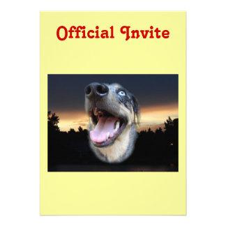 Catahoula Leopard Dog Sunset Custom Invitations