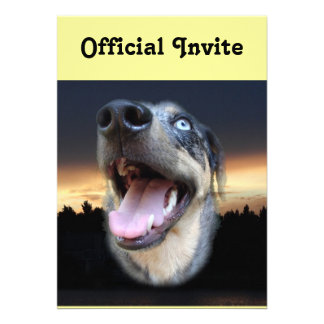 Catahoula Leopard Dog Sunset Personalized Invite