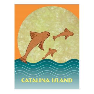 Catalina Flying Fish Postcard