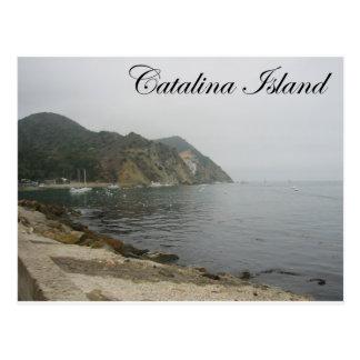 Catalina Island 5 Postcard
