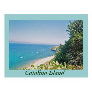 Catalina Island Postcard