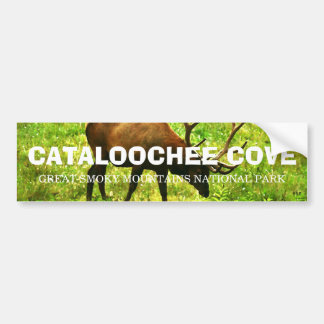 Cataloochee Cove - Great Smoky Mountains Car Bumper Sticker