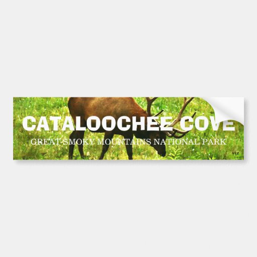 Cataloochee Cove - Great Smoky Mountains Bumper Stickers