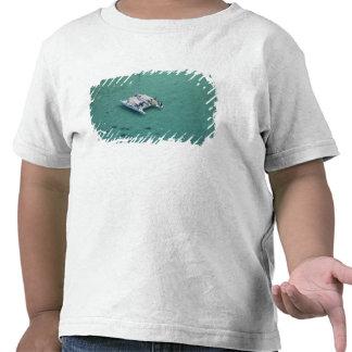 Catamaran, Mamanuca Islands, Fiji, South Pacific Tee Shirts
