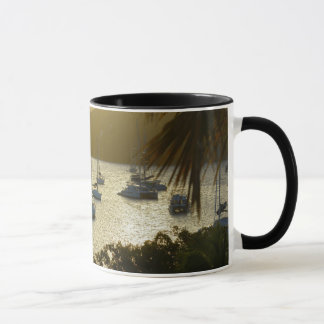 Catamarans and sailboats mug