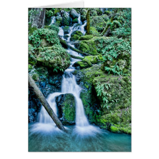 Cataract Creek Waterfall Card
