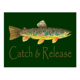 Catch and Release Fishing Postcards