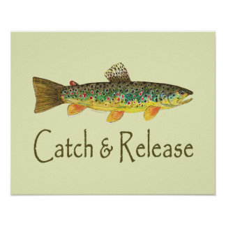 Catch and Release Fishing Poster