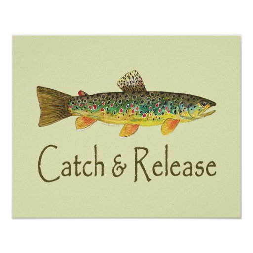 Catch and Release Fishing Posters