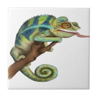 CATCH THE EYE CERAMIC TILE