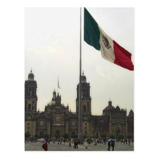 Catedral en el Zocalo del DF & la Bandera Mexicana Postcard