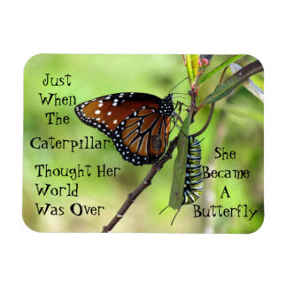 Caterpillar / Butterfly Quote Magnet