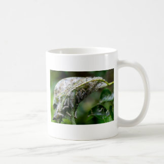 Caterpillar Hatch Cocoon Rain Fall Coffee Mug