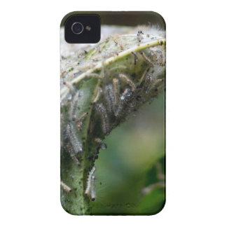 Caterpillar Hatch Cocoon Rain Fall iPhone 4 Case