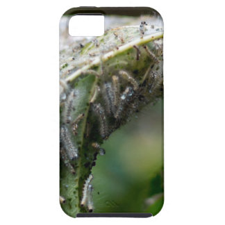 Caterpillar Hatch Cocoon Rain Fall iPhone 5 Case