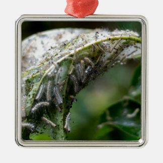 Caterpillar Hatch Cocoon Rain Fall Metal Ornament