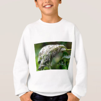 Caterpillar Hatch Cocoon Rain Fall Sweatshirt