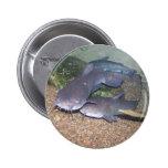 Catfish fishing zoo pin
