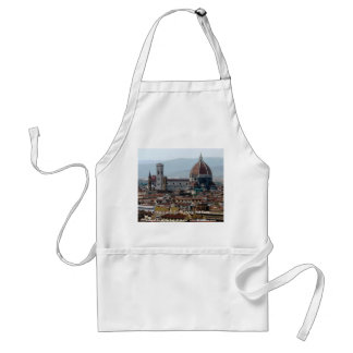 Cathedral di Santa Maria del Fiore Standard Apron