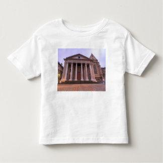Cathedral of Saint Peter of Geneva Toddler T-Shirt