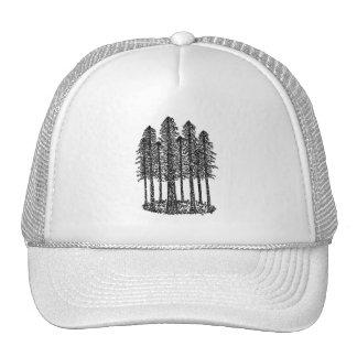 Cathedral Ring (Coastal Redwoods Sketch) Cap